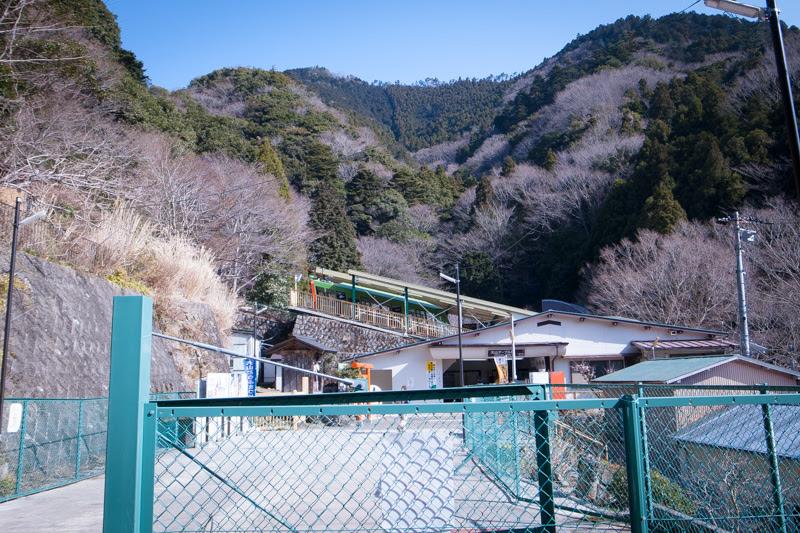 大山ケーブル駅付近