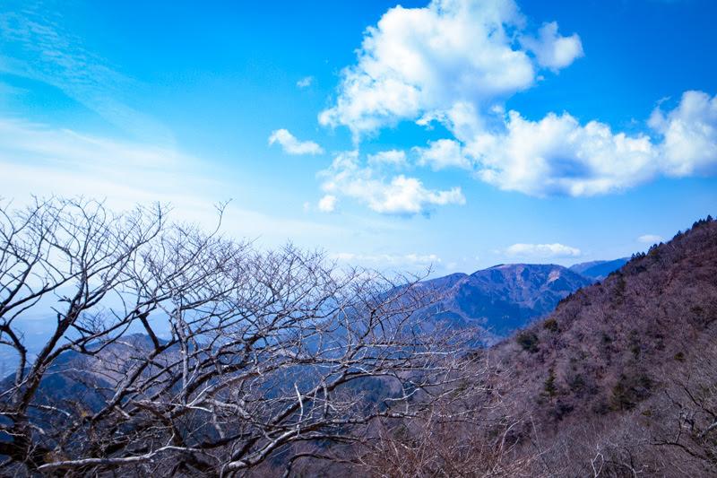大山山頂付近より眺望