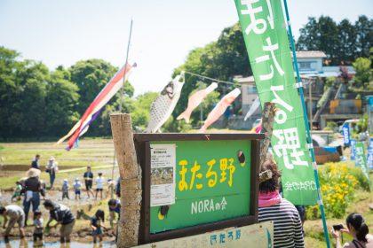 NORAの会の田植え2018_11