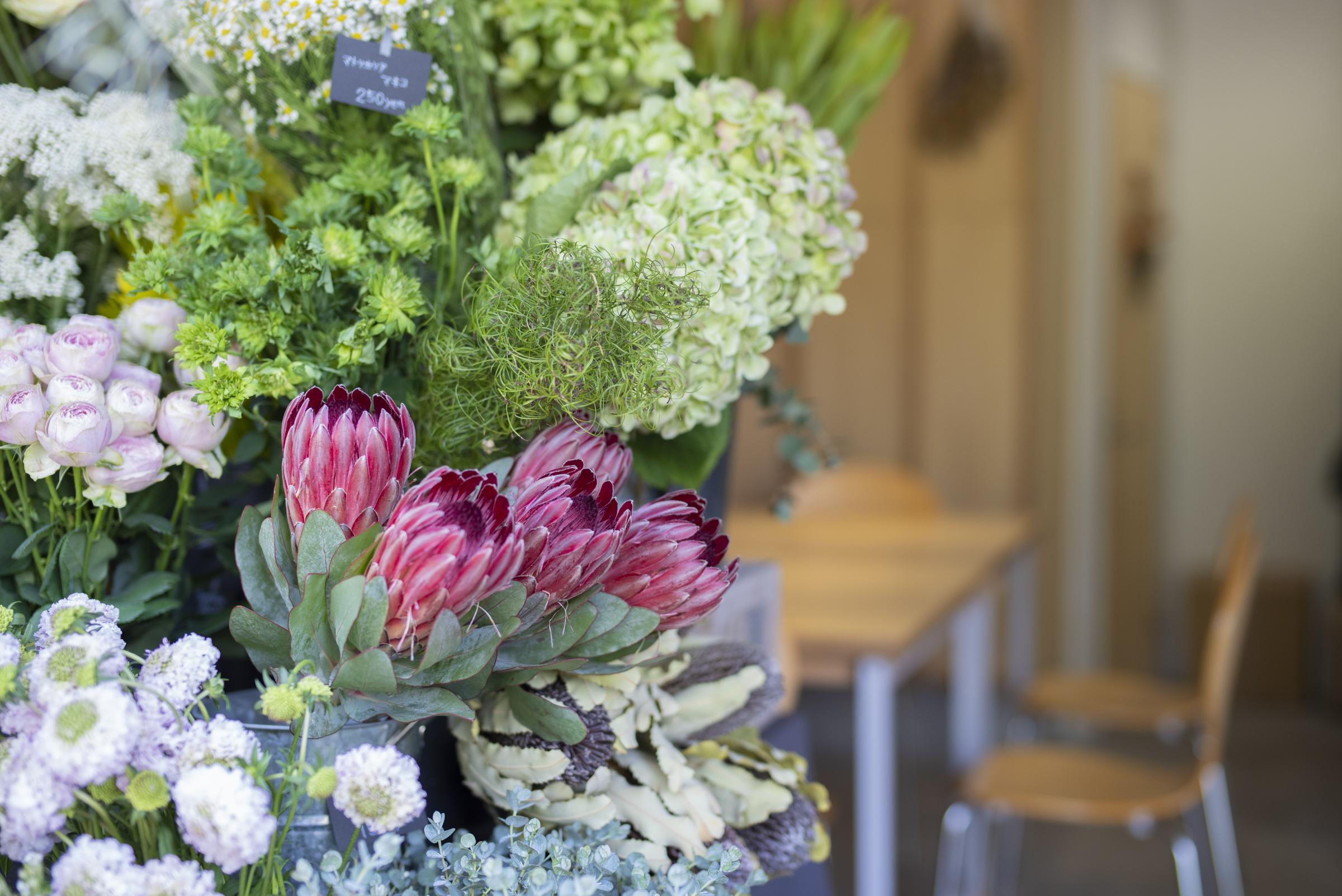 01_florist_fryers