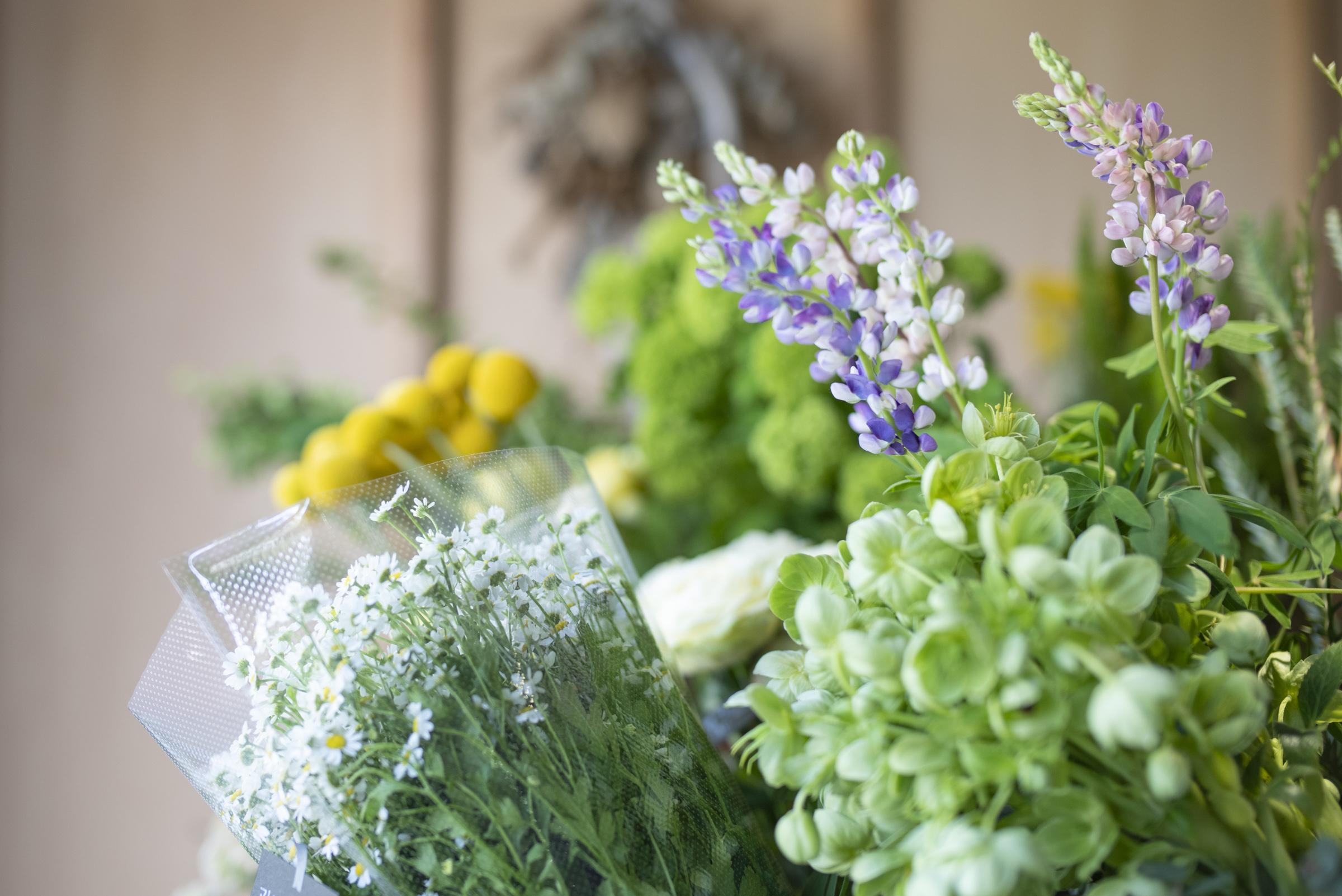 06_florist_fryers